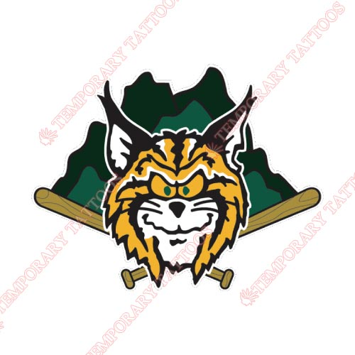 Lynchburg Hillcats Customize Temporary Tattoos Stickers NO.7792