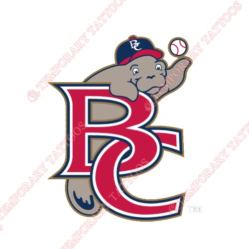 Brevard County Manatees Customize Temporary Tattoos Stickers NO.7884