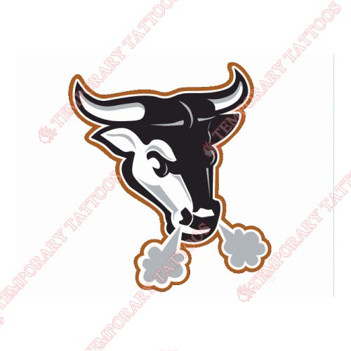 Durham Bulls Customize Temporary Tattoos Stickers NO.7965