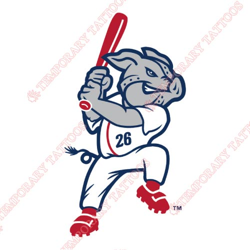 Lehigh Valley IronPigs Customize Temporary Tattoos Stickers NO.7983