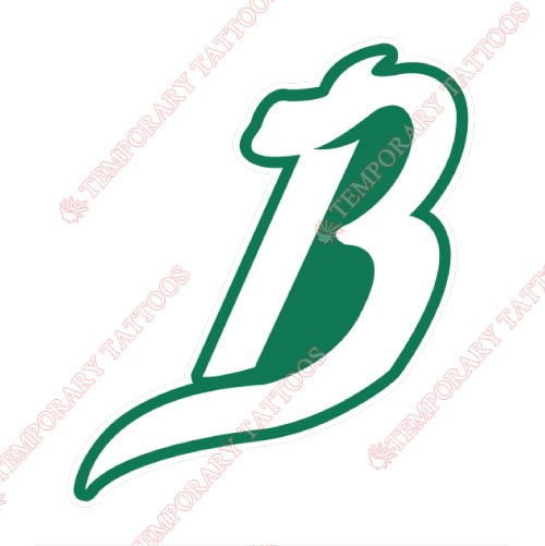 Reynosa Broncos Customize Temporary Tattoos Stickers NO.8057