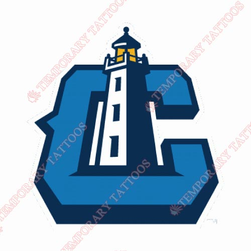 Lake County Captains Customize Temporary Tattoos Stickers NO.8115