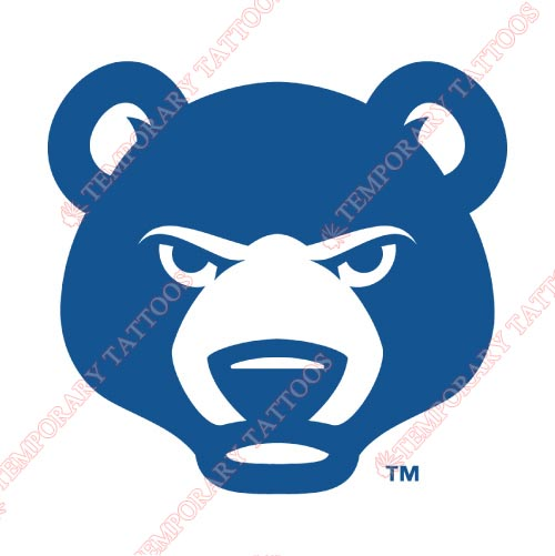 South Bend Cubs Customize Temporary Tattoos Stickers NO.8129