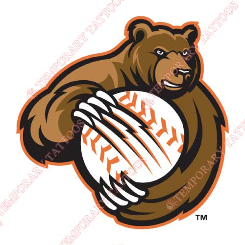 Fresno Grizzlies Customize Temporary Tattoos Stickers NO.8158