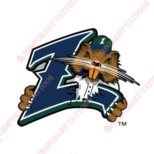 New Orleans Zephyrs Customize Temporary Tattoos Stickers NO.8191