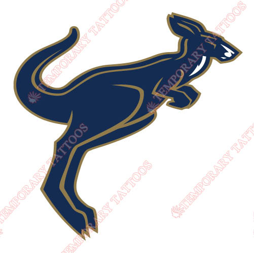 Akron Zips Customize Temporary Tattoos Stickers NO.3697