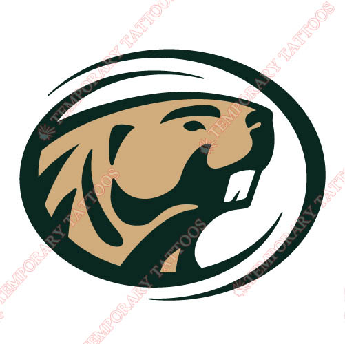 Bemidji State Beavers 2004 Customize Temporary Tattoos Stickers NO.3994
