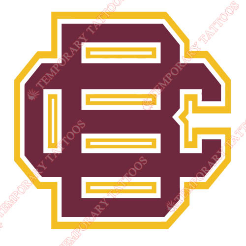 Bethune Cookman Wildcats 2010 Pres Primary Customize Temporary Tattoos Stickers NO.4002