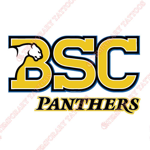 Birmingham Southern Panthers Customize Temporary Tattoos Stickers N4007