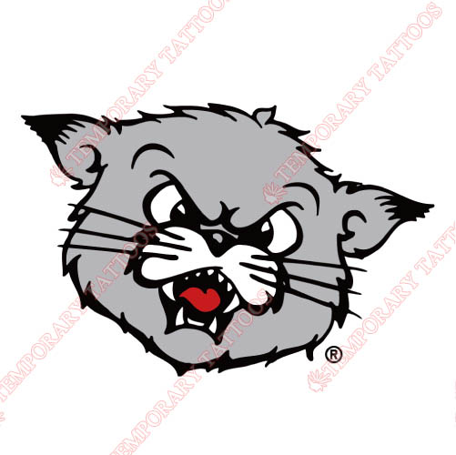 Cincinnati Bearcats Customize Temporary Tattoos Stickers NO.4143