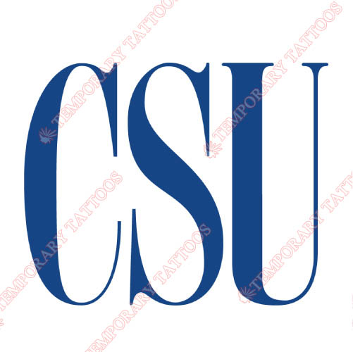 Coppin State Eagles Customize Temporary Tattoos Stickers NO.4191