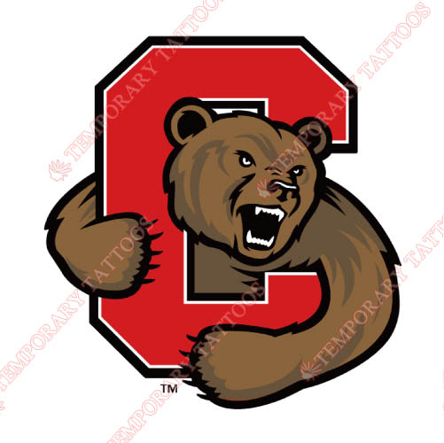 Cornell Big Red Customize Temporary Tattoos Stickers NO.4194