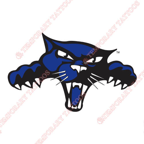 High Point Panthers Customize Temporary Tattoos Stickers NO.4546