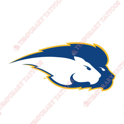 Hofstra Pride Customize Temporary Tattoos Stickers NO.4554