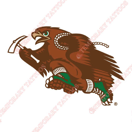 Lehigh Mountain Hawks Customize Temporary Tattoos Stickers NO.4780