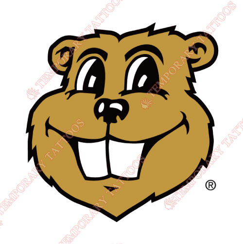 Minnesota Golden Gophers Customize Temporary Tattoos Stickers NO.5102