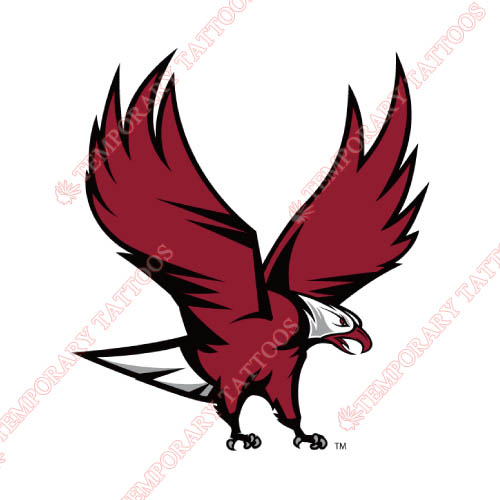 NCCU Eagles Customize Temporary Tattoos Stickers NO.5370