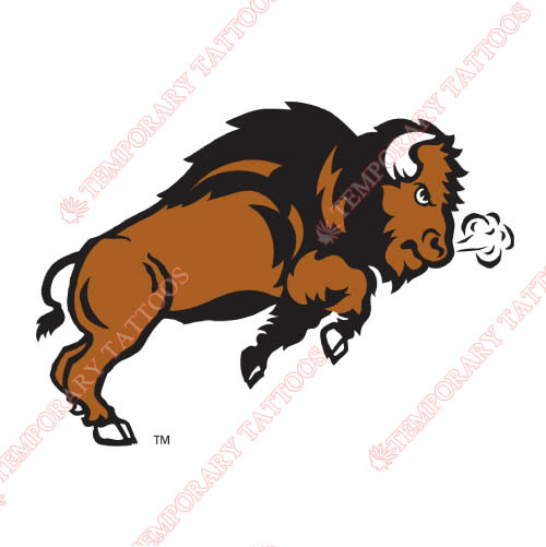 North Dakota State Bison Customize Temporary Tattoos Stickers NO.5602