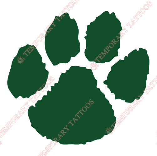 Northern Michigan Wildcats Customize Temporary Tattoos Stickers NO.5689