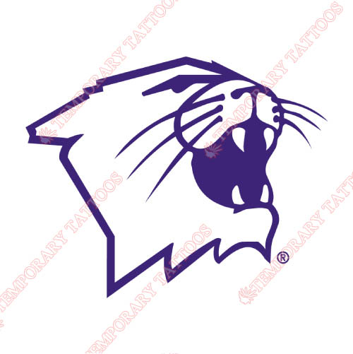 Northwestern Wildcats Customize Temporary Tattoos Stickers NO.5705