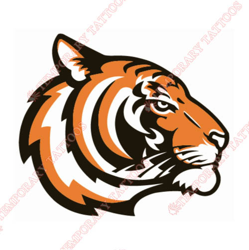 Princeton Tigers Customize Temporary Tattoos Stickers NO.5925