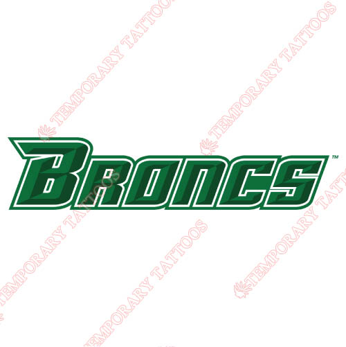 Texas Pan American Broncs Customize Temporary Tattoos Stickers NO.6524