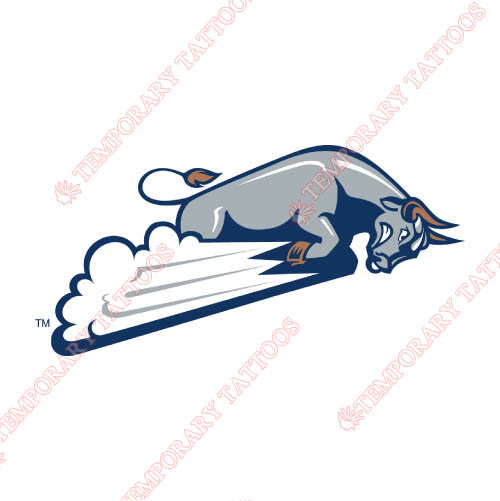 Utah State Aggies Customize Temporary Tattoos Stickers NO.6746