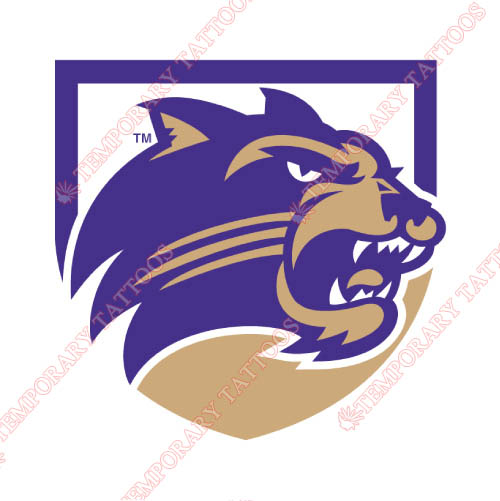 Western Carolina Catamounts Customize Temporary Tattoos Stickers NO.6957