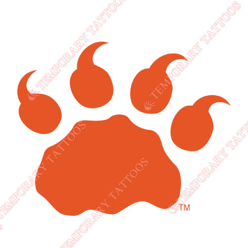 BC Lions Customize Temporary Tattoos Stickers NO.7573