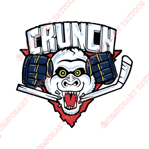 Syracuse Crunch Customize Temporary Tattoos Stickers NO.9158