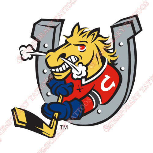 Barrie Colts Customize Temporary Tattoos Stickers NO.7310