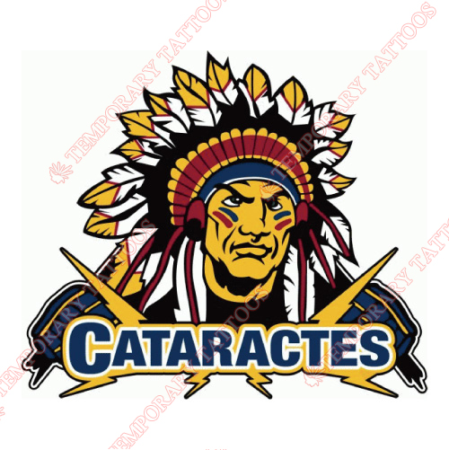 Shawinigan Cataractes Customize Temporary Tattoos Stickers NO.7467
